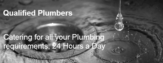 plumber bellevue